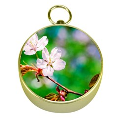 Sakura Flowers On Green Gold Compasses by FunnyCow