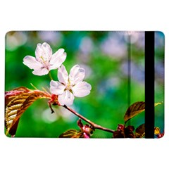 Sakura Flowers On Green Ipad Air Flip by FunnyCow