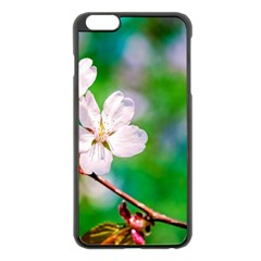 Sakura Flowers On Green Apple Iphone 6 Plus/6s Plus Black Enamel Case by FunnyCow