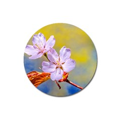 Sakura Flowers On Yellow Magnet 3  (round) by FunnyCow