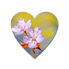 Sakura Flowers On Yellow Heart Magnet by FunnyCow