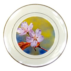 Sakura Flowers On Yellow Porcelain Plates by FunnyCow