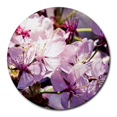 Sakura In The Shade Round Mousepads by FunnyCow