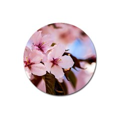 Three Sakura Flowers Magnet 3  (round) by FunnyCow