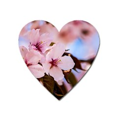 Three Sakura Flowers Heart Magnet by FunnyCow