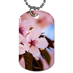 Three Sakura Flowers Dog Tag (one Side) by FunnyCow