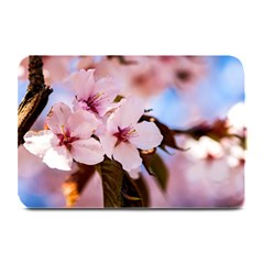 Three Sakura Flowers Plate Mats by FunnyCow