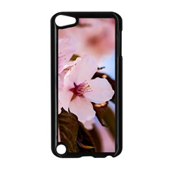 Three Sakura Flowers Apple Ipod Touch 5 Case (black) by FunnyCow