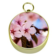 Three Sakura Flowers Gold Compasses by FunnyCow