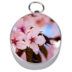 Three Sakura Flowers Silver Compasses by FunnyCow