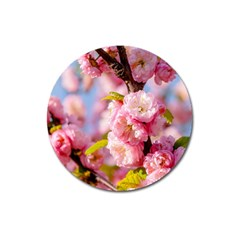 Flowering Almond Flowersg Magnet 3  (round) by FunnyCow