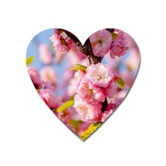 Flowering Almond Flowersg Heart Magnet by FunnyCow