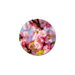 Flowering Almond Flowersg Golf Ball Marker (4 Pack) by FunnyCow