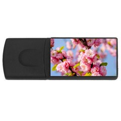 Flowering Almond Flowersg Rectangular Usb Flash Drive by FunnyCow