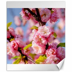 Flowering Almond Flowersg Canvas 8  X 10  by FunnyCow