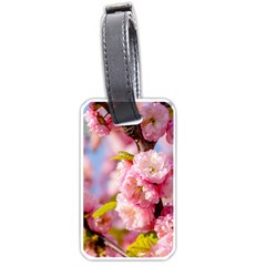 Flowering Almond Flowersg Luggage Tags (one Side)  by FunnyCow