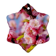 Flowering Almond Flowersg Snowflake Ornament (two Sides) by FunnyCow