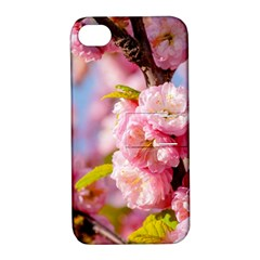 Flowering Almond Flowersg Apple Iphone 4/4s Hardshell Case With Stand by FunnyCow