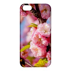 Flowering Almond Flowersg Apple Iphone 5c Hardshell Case by FunnyCow