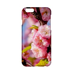 Flowering Almond Flowersg Apple Iphone 6/6s Hardshell Case by FunnyCow