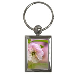 Single Almond Flower Key Chains (rectangle)  by FunnyCow