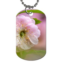 Single Almond Flower Dog Tag (two Sides) by FunnyCow