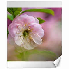Single Almond Flower Canvas 16  X 20   by FunnyCow