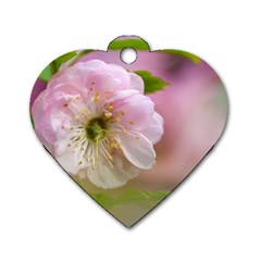 Single Almond Flower Dog Tag Heart (one Side) by FunnyCow