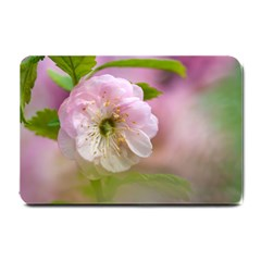 Single Almond Flower Small Doormat  by FunnyCow