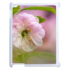 Single Almond Flower Apple Ipad 2 Case (white) by FunnyCow
