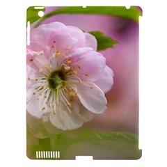 Single Almond Flower Apple Ipad 3/4 Hardshell Case (compatible With Smart Cover) by FunnyCow