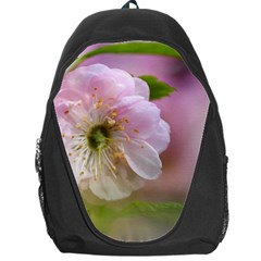 Single Almond Flower Backpack Bag by FunnyCow