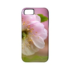 Single Almond Flower Apple Iphone 5 Classic Hardshell Case (pc+silicone) by FunnyCow