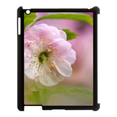 Single Almond Flower Apple Ipad 3/4 Case (black) by FunnyCow
