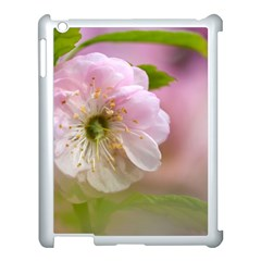Single Almond Flower Apple Ipad 3/4 Case (white) by FunnyCow