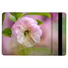Single Almond Flower Ipad Air Flip by FunnyCow
