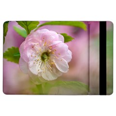 Single Almond Flower Ipad Air 2 Flip by FunnyCow