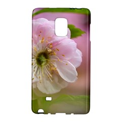 Single Almond Flower Samsung Galaxy Note Edge Hardshell Case by FunnyCow