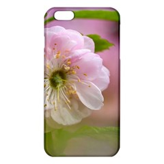 Single Almond Flower Iphone 6 Plus/6s Plus Tpu Case by FunnyCow