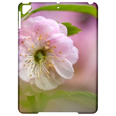 Single Almond Flower Apple Ipad Pro 9 7   Hardshell Case by FunnyCow