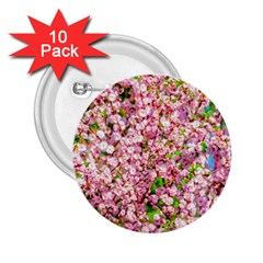 Almond Tree In Bloom 2 25  Buttons (10 Pack)  by FunnyCow