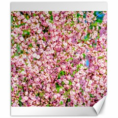 Almond Tree In Bloom Canvas 20  X 24   by FunnyCow