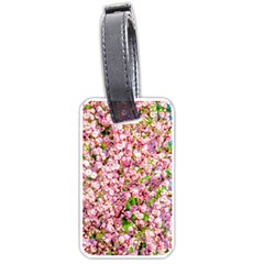 Almond Tree In Bloom Luggage Tags (one Side)  by FunnyCow