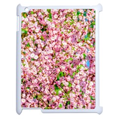 Almond Tree In Bloom Apple Ipad 2 Case (white) by FunnyCow