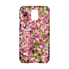 Almond Tree In Bloom Samsung Galaxy S5 Hardshell Case  by FunnyCow