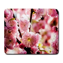 Blooming Almond At Sunset Large Mousepads by FunnyCow