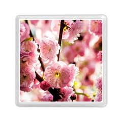 Blooming Almond At Sunset Memory Card Reader (square) by FunnyCow