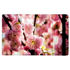 Blooming Almond At Sunset Apple Ipad 3/4 Flip Case by FunnyCow