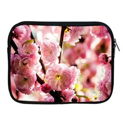Blooming Almond At Sunset Apple Ipad 2/3/4 Zipper Cases by FunnyCow