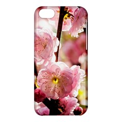 Blooming Almond At Sunset Apple Iphone 5c Hardshell Case by FunnyCow
